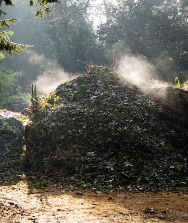 Hot Compost